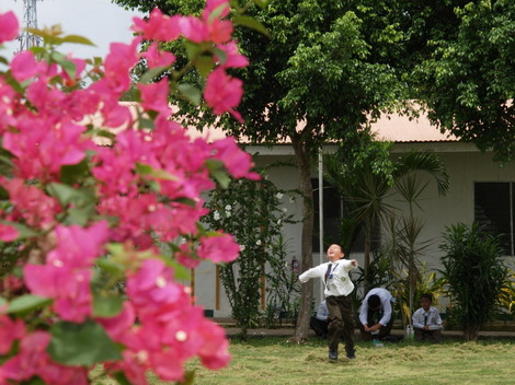 マクタン島・緑豊かな海辺の英語学校RPC